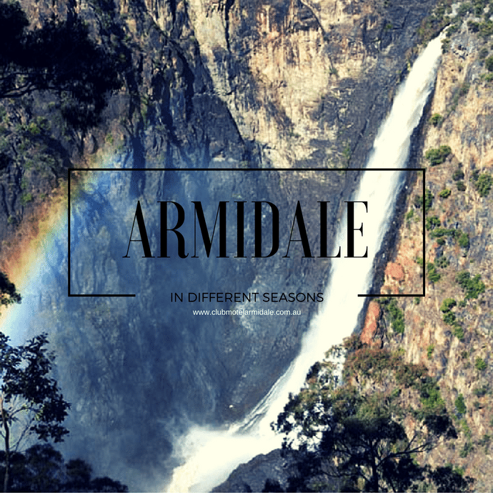 Visiting Armidale in Different Seasons