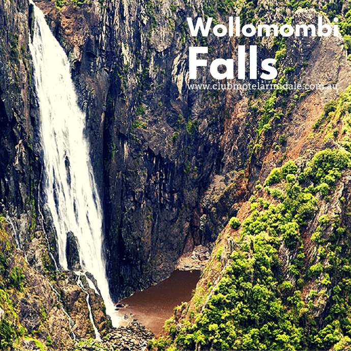 Tips When Going to Wollomombi Falls