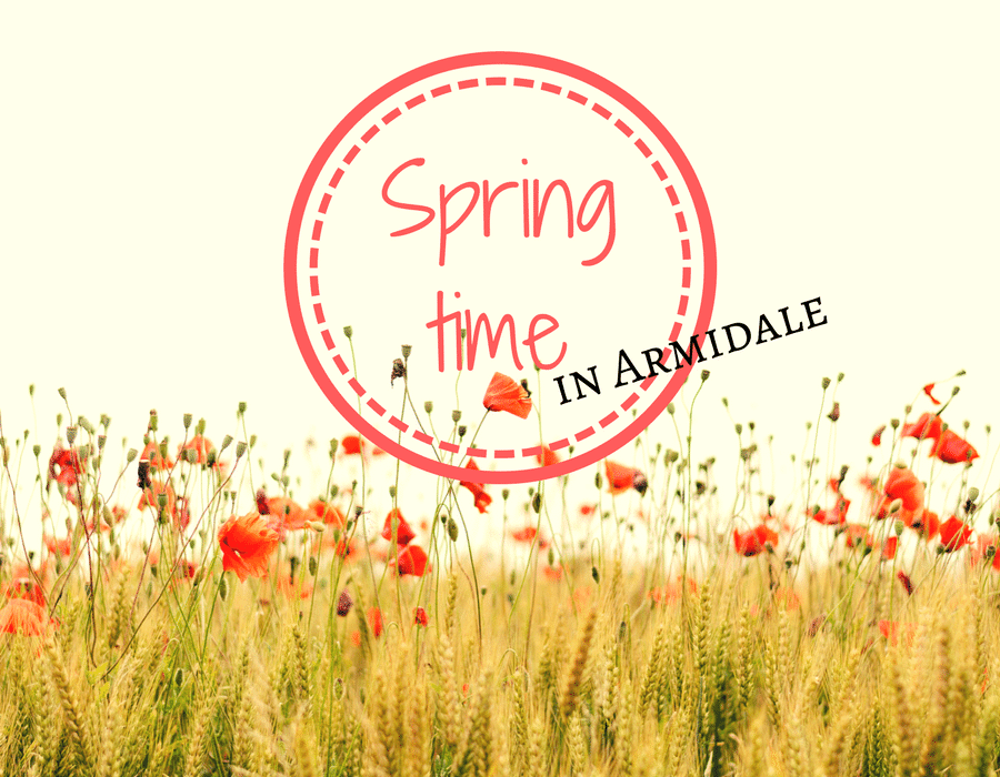10 Things to do in Armidale during Spring -